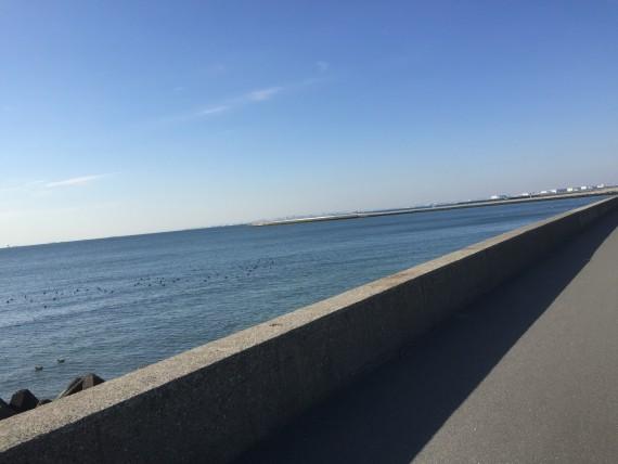 稲毛海岸画像3