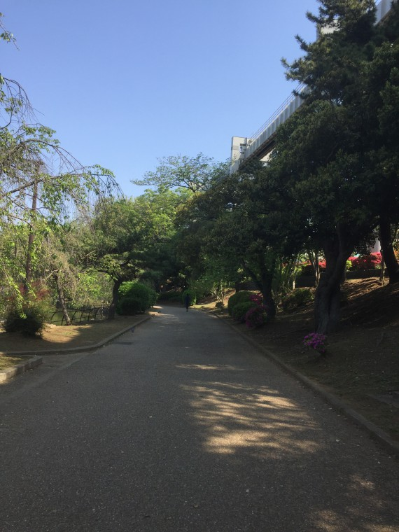 千葉公園内下校写真