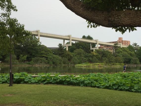 2期7話千葉公園写真