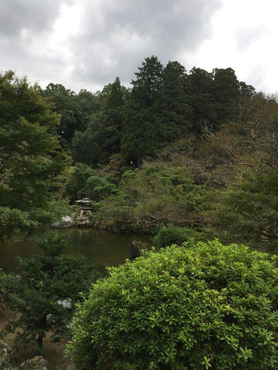 10月の成田山公園写真