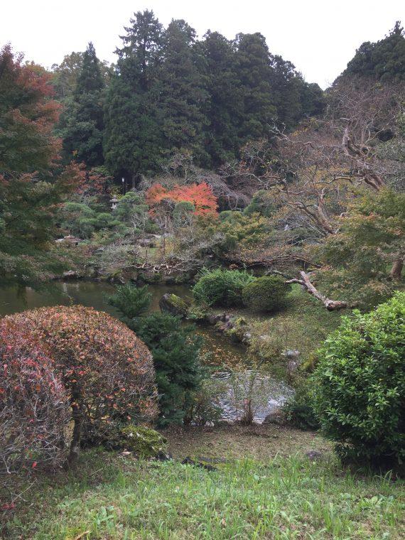 池の辺り歩道写真
