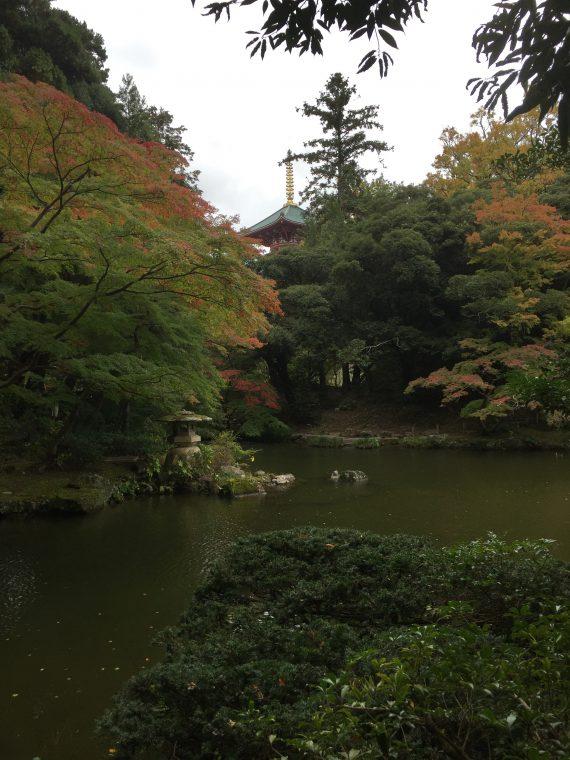 文殊の池写真