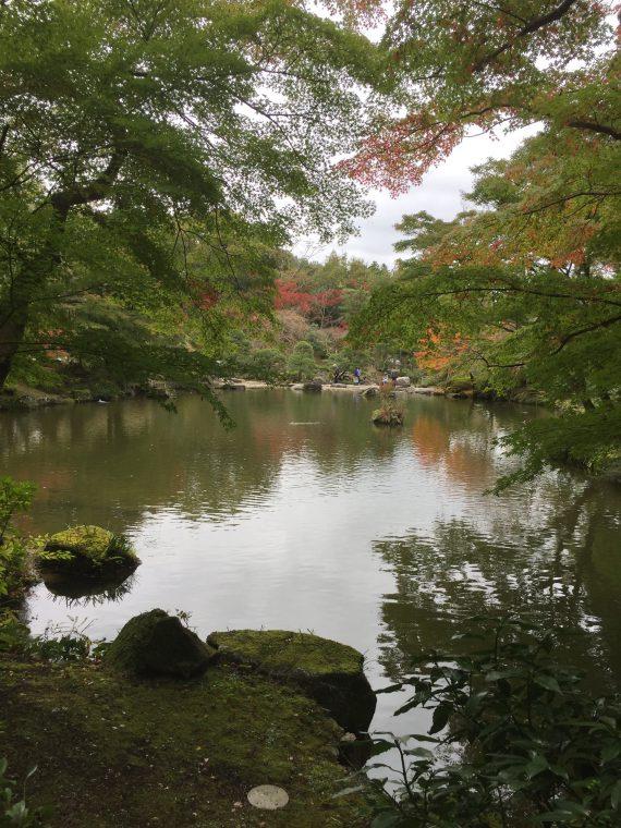 竜樹の池写真1