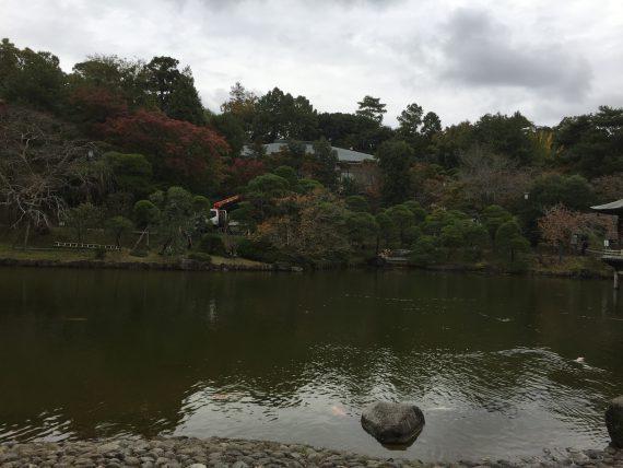 竜智の池写真1